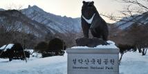 09 Hari South Korea